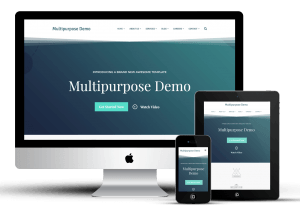 Multipurpose Demo Mobile Responsive